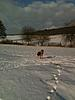 members/ankekc-albums-ajia-picture52700-winterliches-weserbergland.jpg